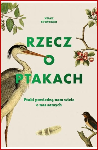 RZECZ O PTAKACH <br>(The Thing with Feathers)